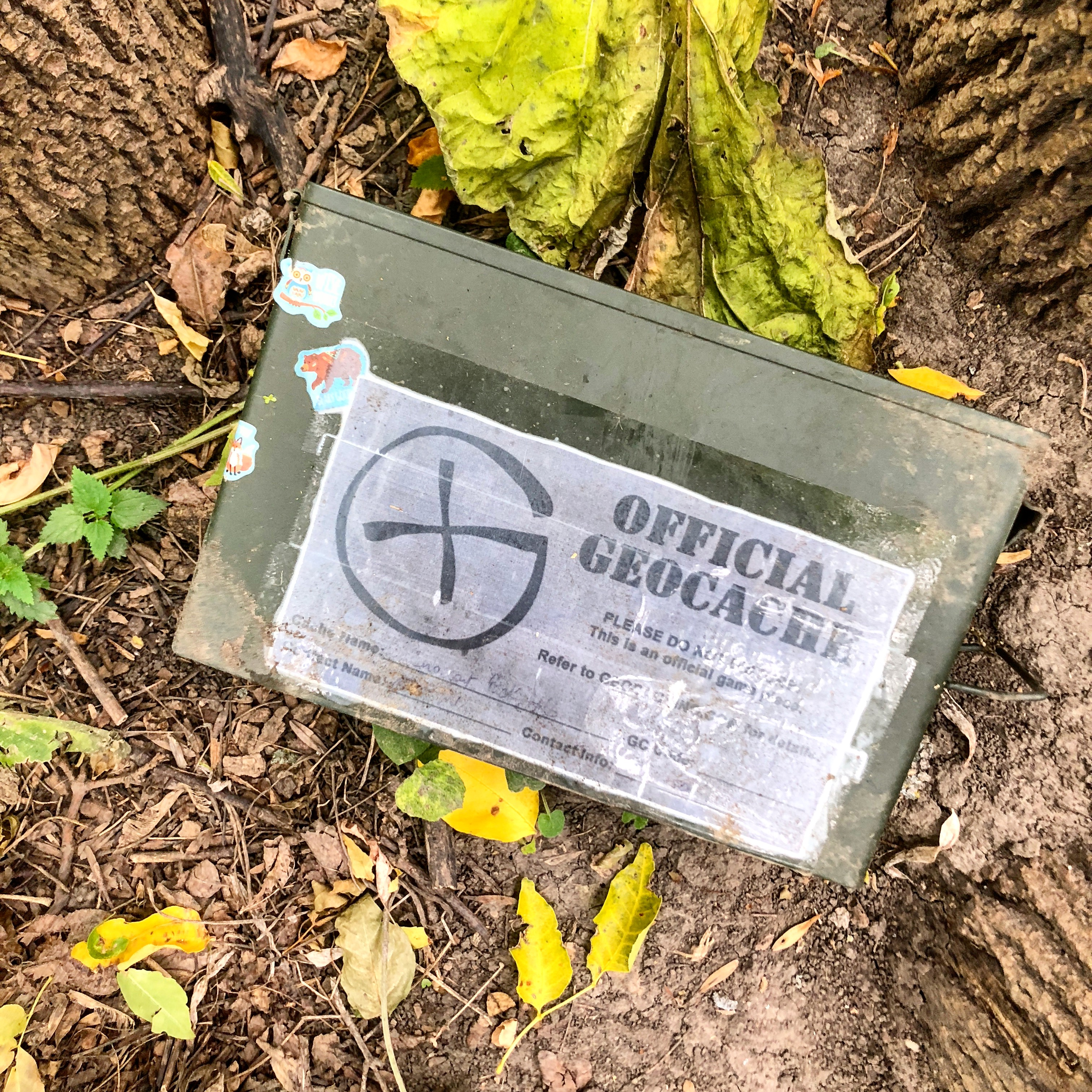What Is Geocaching Definition Origin And Adventure Geocaching